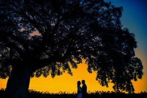 Javi Calvo Fotografo bodas-36- Fotografo bodas en Avila